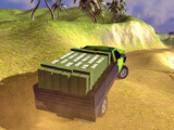 Tropical Delivery